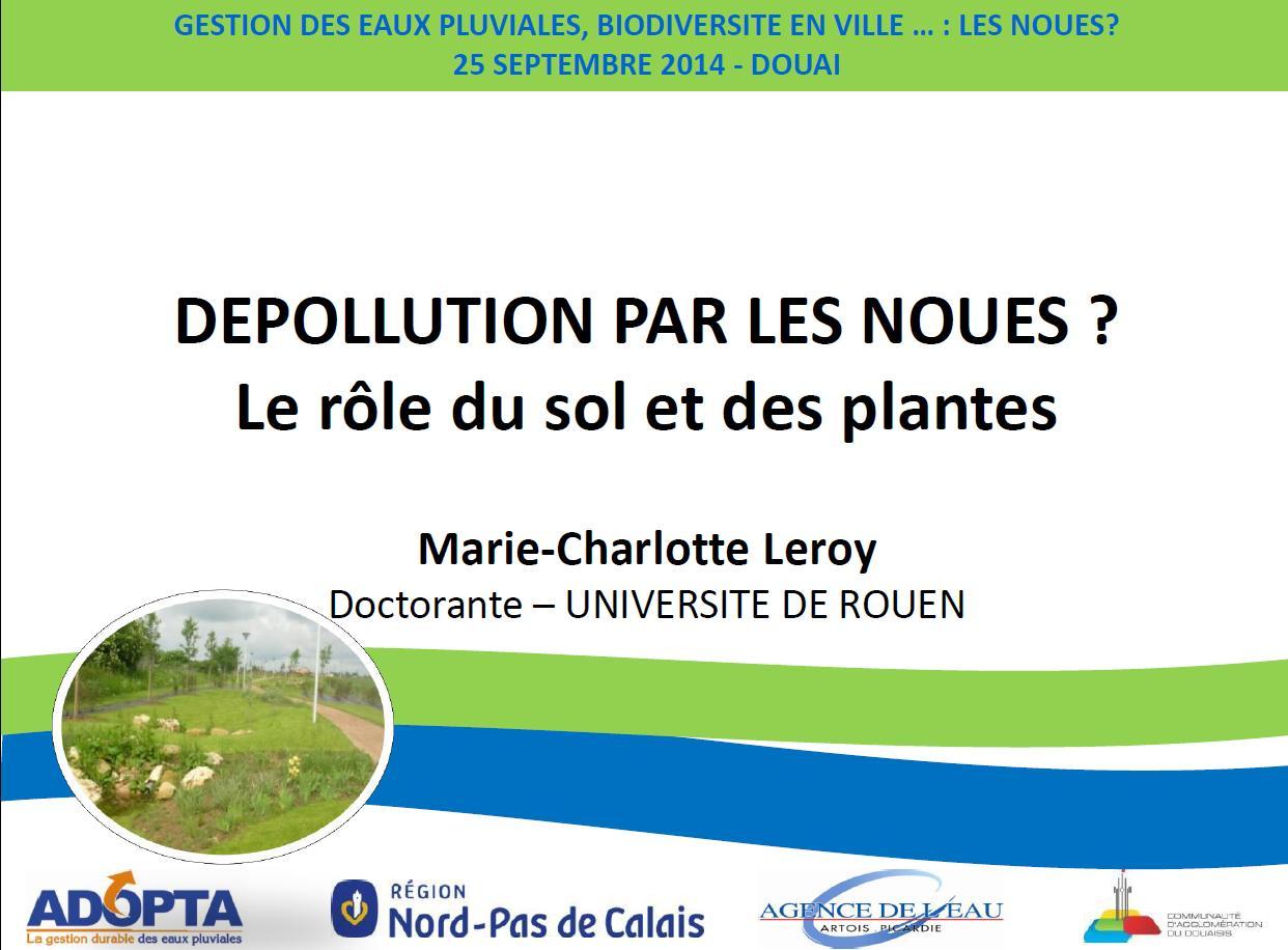 Infra services ing nierie et conception durable de l 39 espace public - Depollution par les plantes ...
