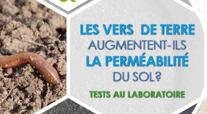 Des résultats prometteurs sur l'étude du rôle des vers de terre sur la perméabilité des sols